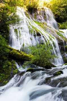 Panther Creek Falls, Gifford Pinchot National Forest and Columbia River Gorge National Scenic Area, WA