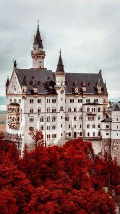 Fairytale castle alert…quite literary! Neuschwanstein Castle in Germany inspired the Sleeping Beauty Castles in Disneyland and Disneyland Hong Kong. Beautiful Castles, Beautiful Places, Castle On The Hill, Chateau Medieval, Sleeping Beauty Castle, Germany Castles, Neuschwanstein Castle, Fairytale Castle, Beautiful Architecture