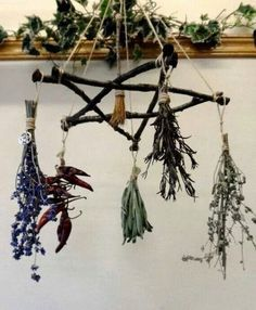 Dream catcher type thing used as a ward, drying herbs and various other magickal applications!! Easily made!