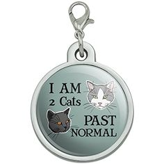 Two Cats Past Normal Chrome Plated Metal Pet Dog Cat ID Tag - Large >>> Details can be found by clicking on the image. (This is an affiliate link) #DogIDTags