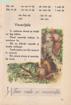 Romanian Language, Vintage School, Kindergarten Activities, Kids Education, Nostalgia, Learning, Books, Classroom, Old Books