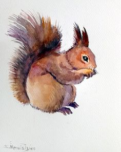 European Squirrel original watercolor painting by ORIGINALONLY