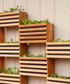 7 Prodigious Useful Tips: Country Vegetable Garden Pots vegetable garden kids how to build.Permaculture Vegetable Garden Design vegetable garden art for kids.Vegetable Garden Trellis How To Make. Diy Garden, Garden Beds, Garden Projects, Diy Projects, Balcony Garden, Recycling Projects, Outdoor Projects, Pallet Projects, Herbs Garden