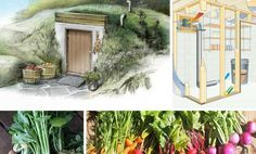 Root Cellars: Store Fresh Food with no Electricity ~