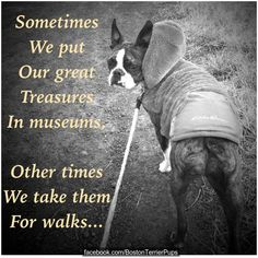 Sometimes we put our great treasures in museums, other times we take them for…