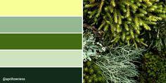 Learn To Crochet, Pattern Design, Community, Colour, Nature, Color, Naturaleza, Nature Illustration, Off Grid