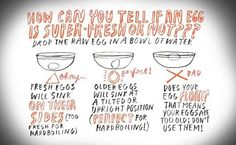 A graphic showing you how to tell if your eggs are expired or good to eat.