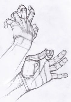Drawing Hands - Study by Stefano Lanza on DeviantArt Drawing Lessons, Drawing Skills, Drawing Techniques, Figure Drawing, Art Lessons, Drawing Tips, Anatomy Sketches, Anatomy Drawing, Anatomy Art