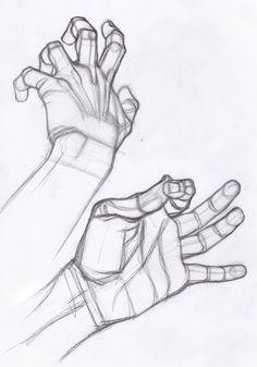 AnatoRef | Hand Studies