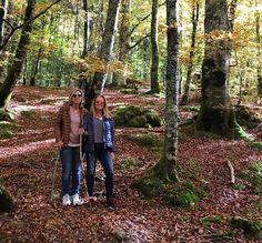 Colores de otoño en Selva de Irati #familytrip #familytime #escapadagastronomica #pamplonamegusta #selvadeirati#halledo#otoño #mesdeoctubre