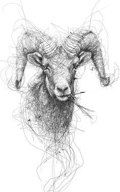 Pencil or pen - great image by Vince Low, Illustrator. Animal on Behance