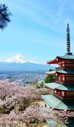japan travel tips. things to do in japan. places to visit in japan. world bucket list destinations. Tokyo Japan Travel, Japan Travel Tips, Asia Travel, Japan Japan, Beach Travel, Italy Travel, Japan Travel Photography, Photography Beach, Beautiful Nature Photography