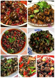 Spicy winkles - think the Brits call them winkles Delicious Cake Recipes, Yummy Cakes, Great Recipes, Yummy Food, Healthy Recipes, Chinese Recipes, Chinese Food, Creative Cakes, Creative Food
