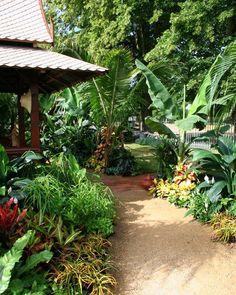 31 Top Tropical Garden Ideas – About Expert Design – Diy Garden Tropical Landscaping, Landscaping With Rocks, Tropical Plants, Garden Landscaping, Tropical Gardens, Exotic Plants, Lush Garden, Dream Garden, Landscape Design Plans