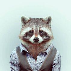 портреты животных в одежде: 10 тыс изображений найдено в Яндекс.Картинках