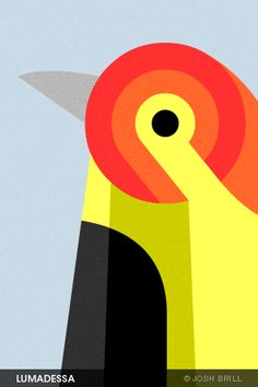 cool iphone wallpapers. #illustration #design #birds