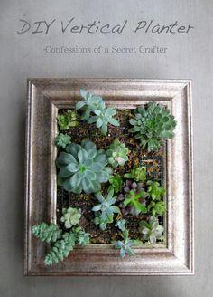 DIY Vertical Succulent Planter