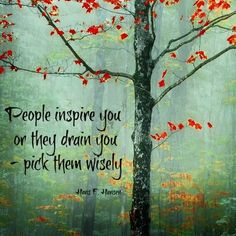 People inspire you or they drain you... pick them wisely.
