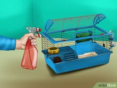 Image titled Keep Your Guinea Pigs Smelling Good Step 4