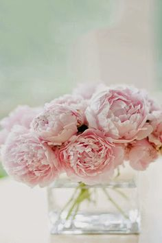 i love the simple beauty of pale pink peonies in a glass vase
