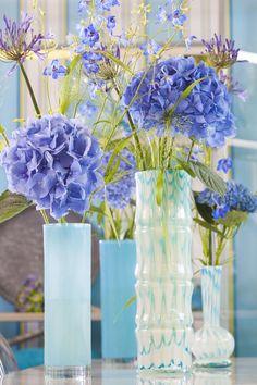 Hortensia in sfeervol blauw