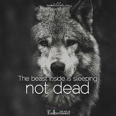 The beast inside is sleeping - https://themindsjournal.com/beast-inside-sleeping/