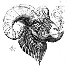 Hand drawn ornately decorated Bighorn Sheep. Drawn with Copic multliner, black colored pencil, ball point pen, Pitt Grey Artist Brush, and graphite on cold press illustration board.