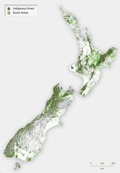 In 2005, after more than 150 years of logging, native forest covered just 24.8% of New Zealand. Most of it was in reserves. Planted exotic forest covered 7.7% of the land.