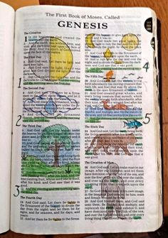 Drawing on and from God's Word