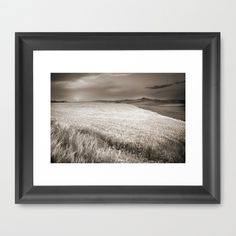 Windy at the cereal fields at sunset Framed Art Print by Guido Montañés - $37.00