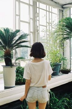 open space that allows natural light + plants. lots of plants.