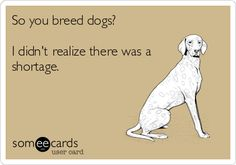 So you breed dogs? I didn't realize there was a shortage. Until they all have a home - stop breeding for profit.