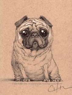 Here's a little pug sketch. I thought of getting a pug before. Illustrations, Amor Pug, Pug Tattoo, Pug Mug, Fu Dog, Pugs And Kisses, Cute Pugs, Funny Pugs, Drawing Tips