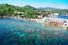 Isla Roatan, Honduras.  We had a private tour of the island, which included playing with spider monkeys and snorkeling.