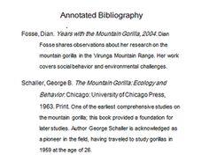 Literary Analysis Essay Sample