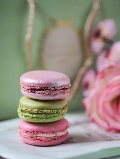 Täydellinen Macaron Resepti - Näin onnistut! Macaron Recipe, Just Eat It, No Bake Cookies, Baking Cookies, Cake Art, Gluten Free Recipes, Making Ideas, Sweet Recipes, Sweet Treats