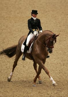 Minna Telde of Sweden riding Don Charly in the FEI World Cup Dressage held during The London International Horse Show at Olympia on December 17, 2008 in London, England. (Photo by Christopher Lee/Getty Images)