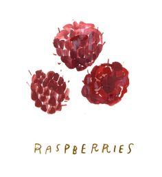 raspberriesws.jpg