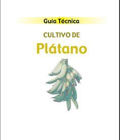 Libros de Agronomia pdf gratis: Guia Tecnica del Cultivo de Platano ~ Libros de Agronomia Gratis