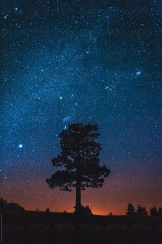 Stock Foto des Nachthimmels von Dimitrije In Pursuit Of Miller's Landscape I have al Night Sky Stars, Starry Night Sky, Night Skies, Night Sky Drawing, Night Sky Painting, Night Time Photography, Nature Photography, Starry Night Wallpaper, Night Sky Photos