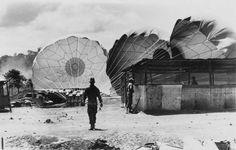 Parachutes by Eddie Adams