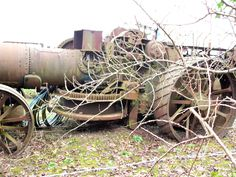 Archived Report - Dredging engine from Welford on AvonDecember 2012 Steam Tractor, Antique Tractors, Rollers, Locomotive, One Pic, Trains, Engineering, American, Pictures