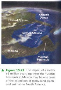 meteor-strikes-yucatan.jpg 200×295 pixels
