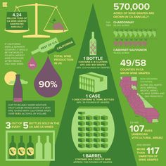 32 Illustrated Facts about California Wine - The Bold Italic - San Francisco. #wine #California #infographic