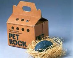 The Pet Rock fad of the 1970s!!  I remember buying one from one of those toy machines in the entrance of a store.  You know those machines you could buy giant gum balls,candy or toys for a quarter.  The toys & plastic jewelry came in those clear round plastic containers kinda like an egg.