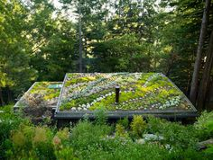 Lloyd Khan. Tiny homes. Living roof