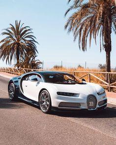 Bugatti Models, Bugatti Cars, Porsche Cars, Lamborghini, New Luxury Cars, Luxury Car Brands, Super Fast Cars, Bmw Wallpapers, Bugatti Chiron