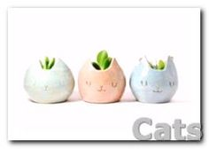 Ways to add #cats everywhere in your home!! Love these little.