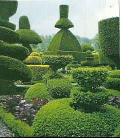 amazing topiary gardens - Google Search