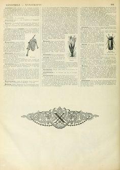 Wings of Whimsy: Noveau Larousse Illustré - X #vintage #french #dictionary #alphabet #capital #initial
